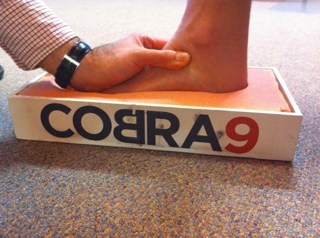 Cobra9 customisation